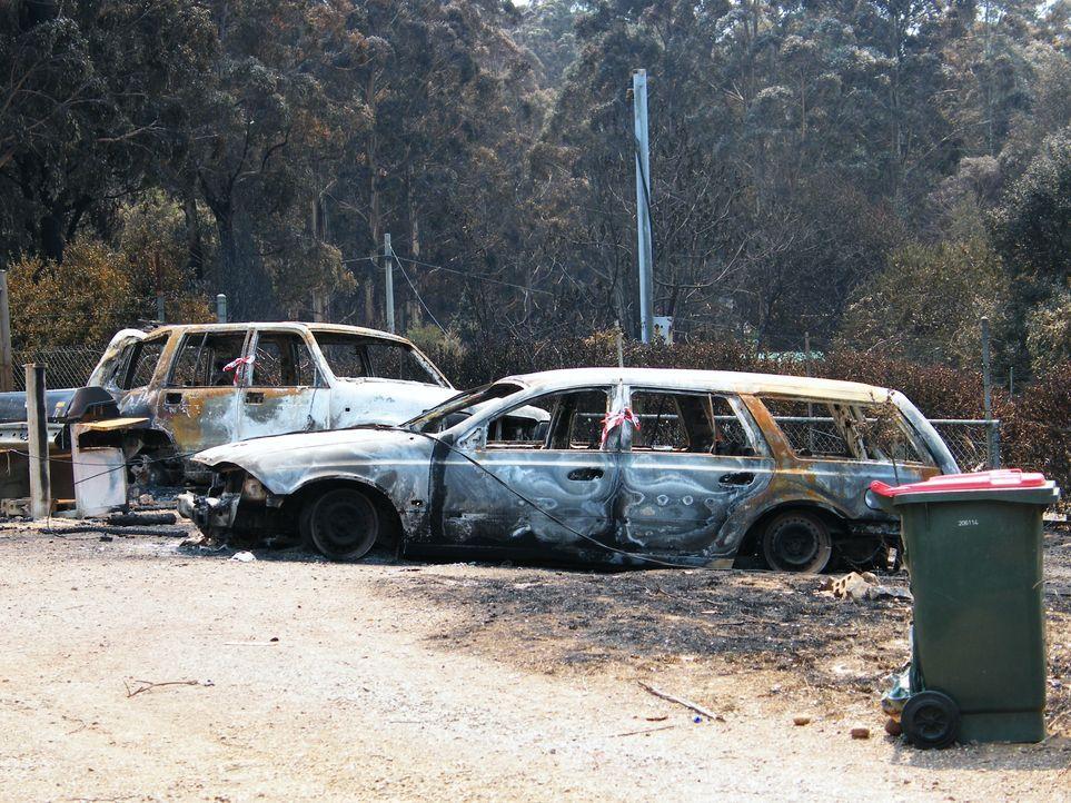 In Kalifornien gibt es immer wieder Waldbrände, doch die Feuerwalze im Oktob... - Bildquelle: Back2Back Productions