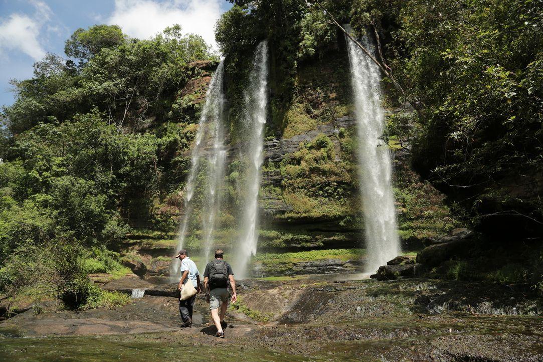 Reporter Tom Waes (r.) macht sich auf den Weg nach Kolumbien - einen Ort, um den der Pauschaltourist einen Riesenbogen macht. Dort erlebt er unglaub... - Bildquelle: 2013 deMENSEN