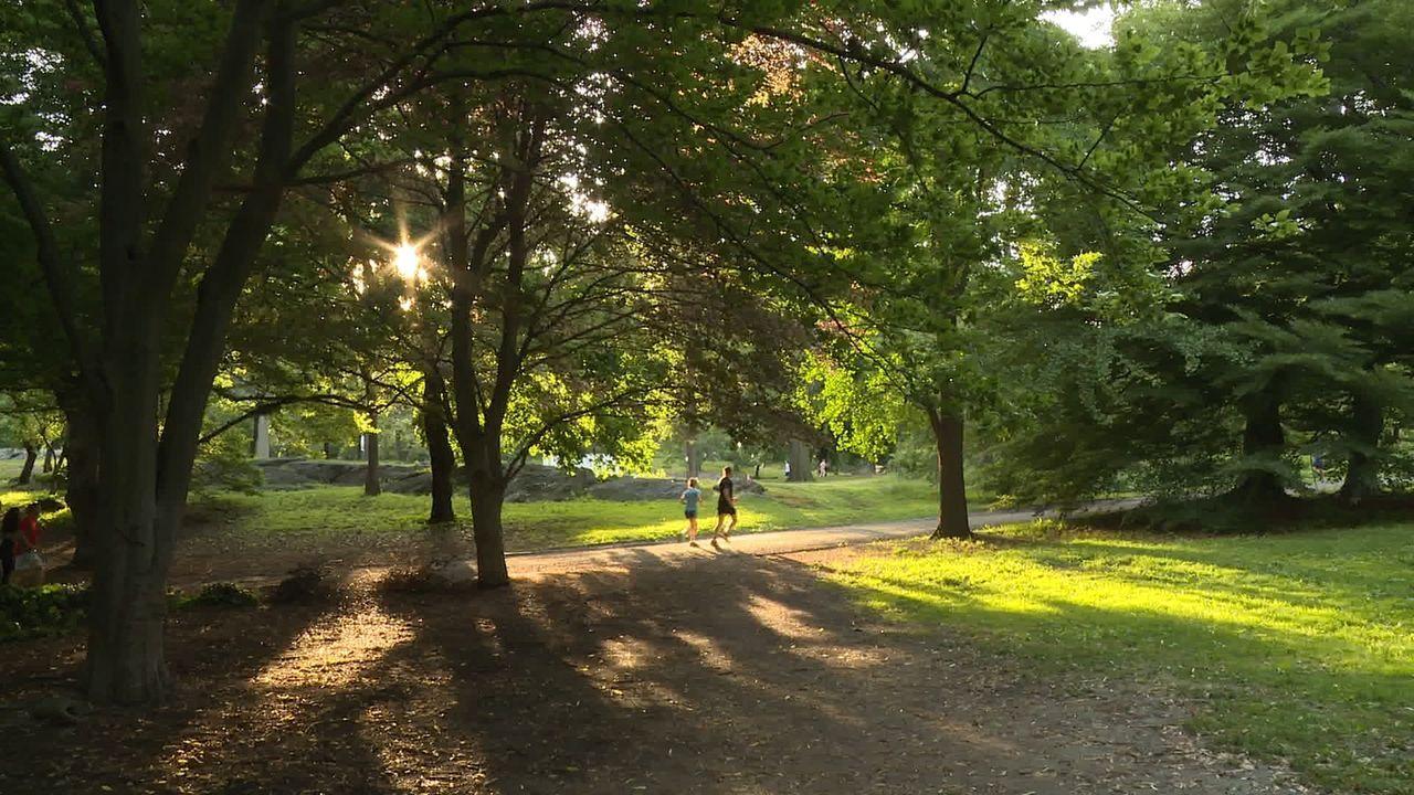 Mit einer Fläche von 341 ha, bietet der berühmte Central Park heute zahlreiche atemberaubende Attraktionen für Touristen und Einheimische. Doch das... - Bildquelle: Indigo Films/ DCL